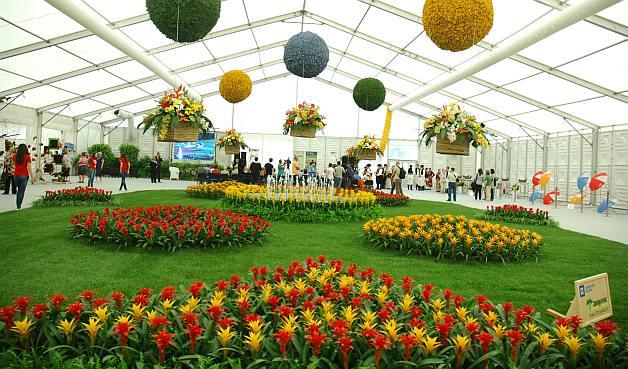 flora-art-2012