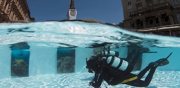 ronjenje-podvodna-izlozba