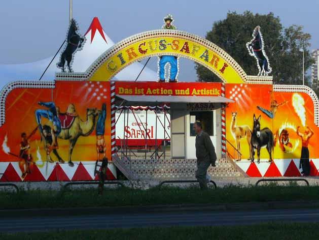 cirkus-safari1