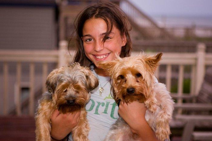 Kućni ljubimci - psi
