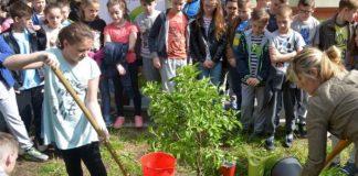 "Želim stablo - Osnovna škola ""Luka"""