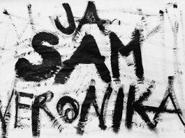 Asylum / I Am Veronika