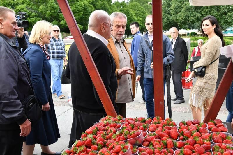 Dani zagrebačkih jagoda