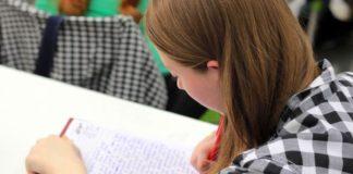 Učenica - učenje