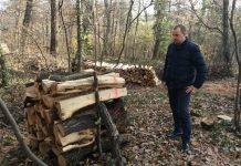 Matić: Treba utvrditi zašto se učestalo sječe šuma na području Zagreba!