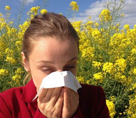 POČINJE PELUDNA SEZONA: Ako ste alergični na pelud, evo kako se možete zaštititi