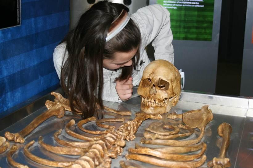 MLADI FORENZIČARI: Arheološki muzej organizira zanimljiv program za školarce