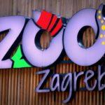 VESELA SUBOTA U MASIMIRU: Obilježava se 94. rođendan Zoološkog vrta i Međunarodni dan risa