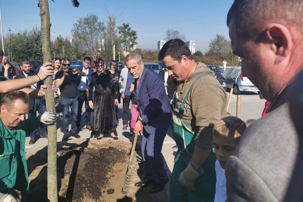 Bandić najavio: Zagreb će imati najveću aleju lipa u Europi, dugačku čak 21 kilometar