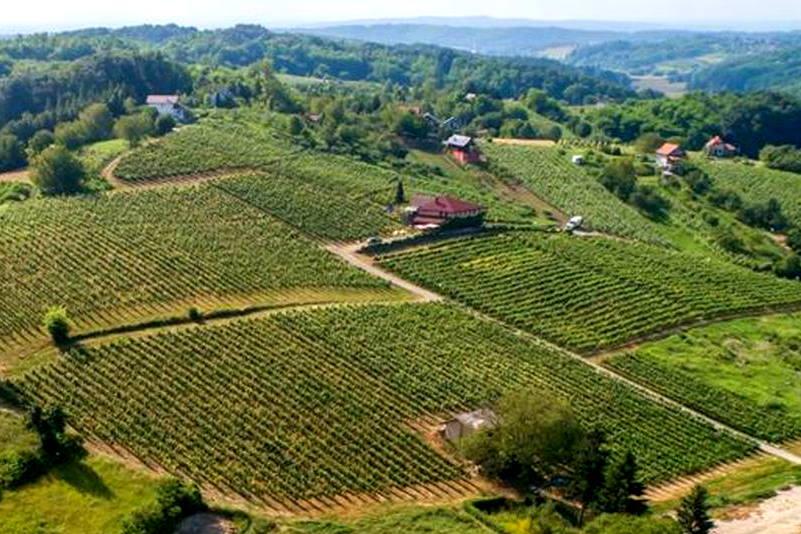 PIKNIK U VINOGRADU: Izletište u blizini Zagreba kreće s novim turističko-ugostiteljskim projektom