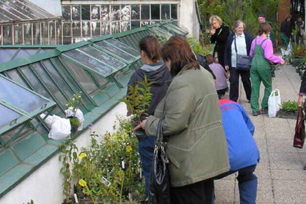 Botanički vrt po vrlo povoljnim cijenama rasprodaje višak