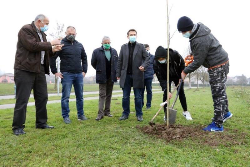 U 17 osnovnih škola Zagrebačke županije uredit će se eko vrtovi, u svakom od njih sadi se Gupčeva lipa