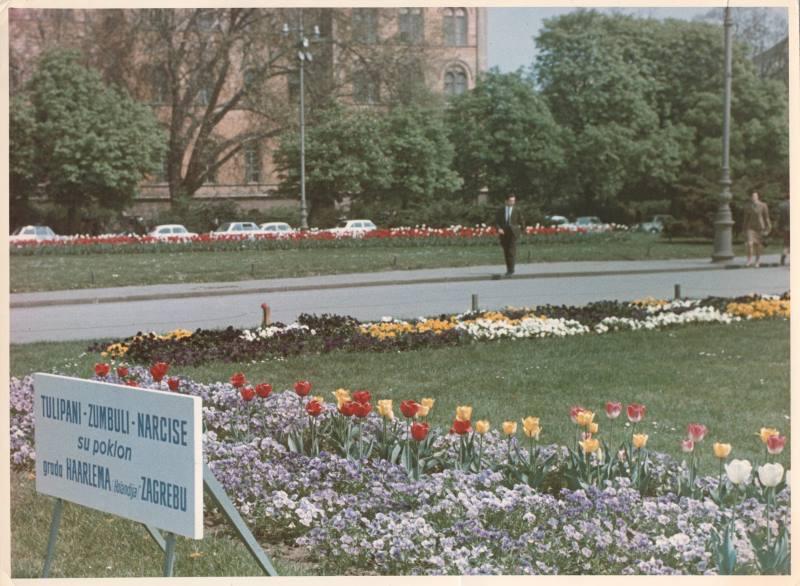 MALA POVIJEST FLORAARTA: Sve je počelo na Gornjem gradu davne 1966. [FOTO]